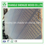18mm Wateproof Marine Film Faced Plywood