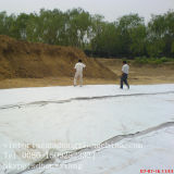 Geomembrane e composto Geomembrane do geotêxtil