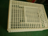 Usine de Chicken Plastic Transport Cage/Chicken Turnover Crate