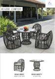 Jeu sectionnel en osier de meubles de jardin de sofa de patio de patio de Hz-Bt111 Rio de sofa extérieur réglé de rotin