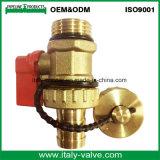 Válvula de ventilação forjada de bronze de qualidade personalizada (IC-3074)
