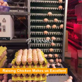 De hete Batterijkooi Van uitstekende kwaliteit van de Kip van de Laag van het Type van Verkoop H Voor het Landbouwbedrijf van Algerije