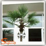 Красивейшая напольная пальма пластмассы искусственного света освещения украшения