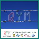 Alambre de púas galvanizado sumergido caliente para la prisión/el alambre de púas para la cerca del aeropuerto