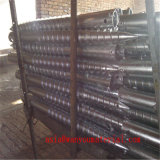 Vis d'ancrage à la terre en acier galvanisé à chaud DIP compétitif