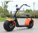 高品質1000W 62V/12ahのブラシレス大人の電気スクーター