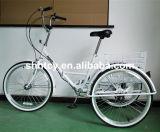 24 triciclos de dobramento da polegada 6-Speed