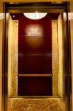 Золотистое Passenger Elevator для Hotel (OEC-J008)