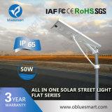 светильник все освещения 50W напольный Soalr в одном солнечном свете сада улицы СИД с 5 Yrs гарантированности