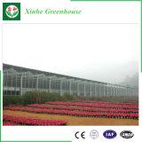 꽃 설치를 위한 고품질 다중 경간 폴리탄산염 온실