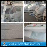 Cucina bianca che fiancheggia, parete, mattonelle del granito della perla di pietra naturale di pavimento