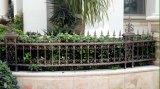 철 위원회로 검술하는 안전에 의하여 직류 전기를 통하는 단철 담 /Black 분말 입히는 강철 정원