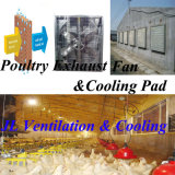 Fan ventilações para Poultry Farm and Greenhouse