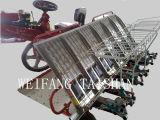 Tipo filas de Weitai Ringding de la repicadora 6 del arroz de la fábrica directa