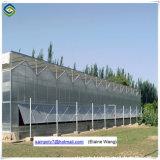 Парник цены по прейскуранту завода-изготовителя стеклянный для растущий огурца