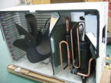 Condicionador de ar rachado do inversor (série P)