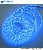 3528SMD 60LEDs/M blaue Farbe IP68 imprägniern LED-Streifen