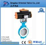 Gebildet in China, Alibaba Dn50 Soem-Präzisions-Qualitäts-Oblate-Drosselventil mit Preis