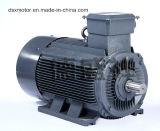 motore a corrente alternata Asincrono a tre fasi del motore del motore elettrico 315kw