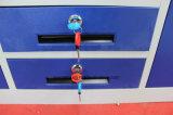 [إيندين] جديدة تصميم أثاث لازم 3 باب حديد خزانة ثوب مع مرآة