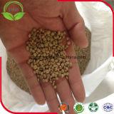 Зеленые чечевицы для качества экспорта