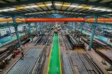 Taller del almacén de los edificios de la estructura de acero hecho del acero de la estructura