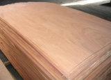 Gurganの設計された木製のベニヤの白い偵察か偵察のベニヤかOkoumeのベニヤ
