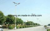 Luz de calle de la alta calidad IP65 Solor LED con el alumbrado público solar de poste