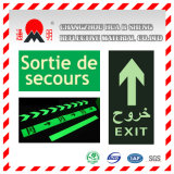 Pet / PVC Photo Luminescent Reflective Film for Non Smoking Sign (FG301)