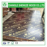 WBP Glue Lower Price para 15m m Printed Logo Film Faced Plywood