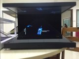 360プレーヤーを広告する程度3Dの接触LCD