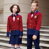 Combinaison d'uniforme unifiée scolaire pour jumper Uniforme scolaire