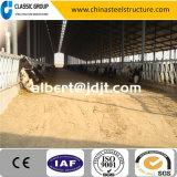 Heiß-Verkauf des Stahlkonstruktion-Gebäude-Preis-Kuh-Bauernhof-Herstellers