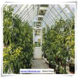 Garten-Gewächshaus-Glas verwendet