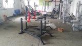 商業体操装置/適性装置/調節可能なローマの椅子