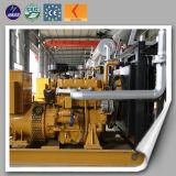 Gas naturale globale del generatore di potere di iso 80kw del Ce della garanzia piccolo
