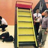 Máquinas de la gimnasia de la venta de la máquina que suben Ldm-011/Hot/nuevas máquinas del cuidado de /Health del equipo de la aptitud