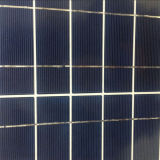 Panel solare Poly 30W