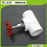 Válvula blanca de PPR para la agua caliente y fría