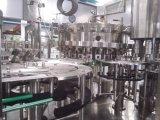 탄산 음료 채우는 생산 라인