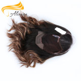 Perruque polychrome de lacet d'arrivée de cheveu brésilien neuf de Vierge