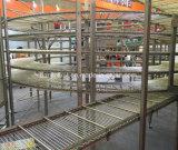 Замораживатель быстро замерзать IQF спиральн быстро для продуктов моря