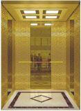 AC Vvvf Gearless de Lift van de Passagier van de Aandrijving zonder de Zaal van de Machine (rls-230)