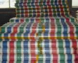 Emerency Shelter Stripe Color Canopies