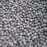 La congelación IQF Orgánica arándano Zl-1008