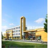 Projeto arquitectónico da rendição da escola preliminar de Jianggezhuang