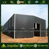 Construction en acier préfabriquée de modèle pour l'entrepôt