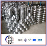 Edelstahl Beleg auf Flansch ASTM (American Standard)