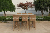 Presidenza sintetica di vendita calda dell'alta barra del rattan di nuovo disegno usando per il giardino /Bar