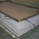 Feuilles matérielles de l'acrylique Sheet/PMMA de Vierge neuve de la qualité 100%